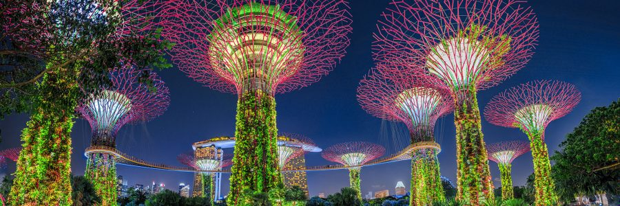 Singapore Video Package Pricing