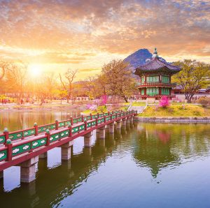 Best local production services in South Korea